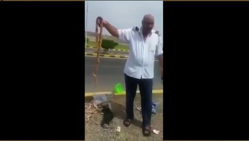 بالفيديو -حاج مصري يصطحب معه كمية كبيرة من الثعابين ورائحتها تفضحه