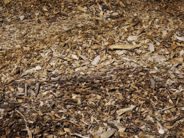 Part of a huge pile of wood chippings