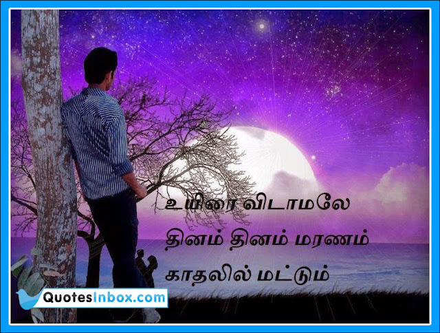 Love Quotes For Him In Tamil Language The Audi Car