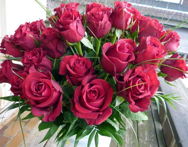allerleisocken und mehr rote rosen. Black Bedroom Furniture Sets. Home Design Ideas