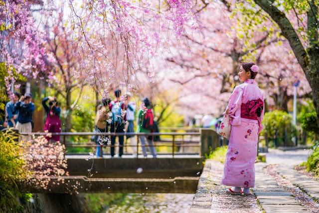 Blossoms Kyoto