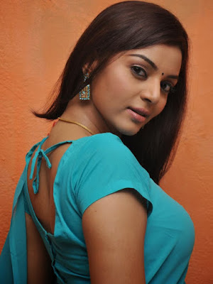 Sanam shetty hot saree stills