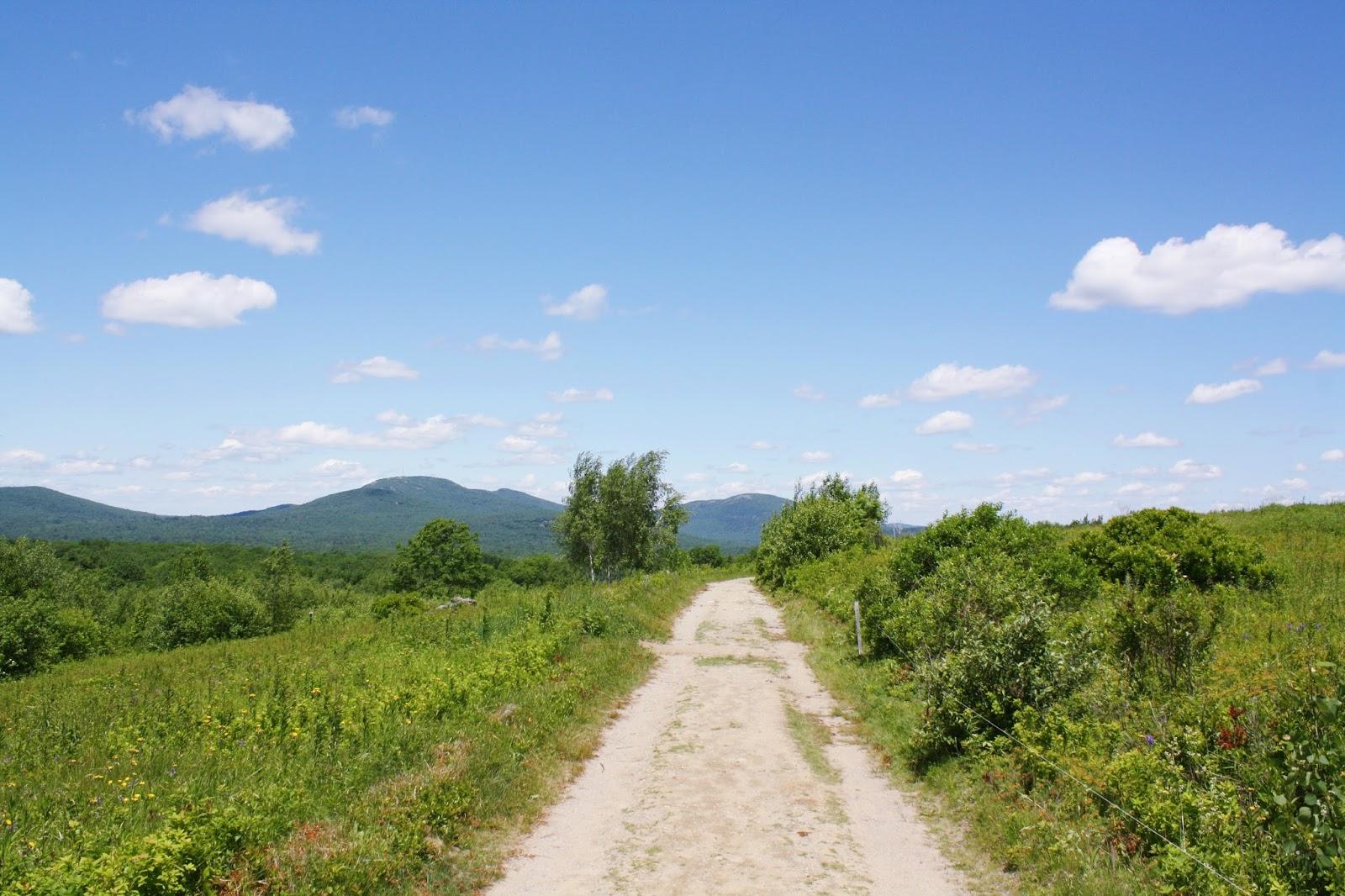 beech hill preserve maine