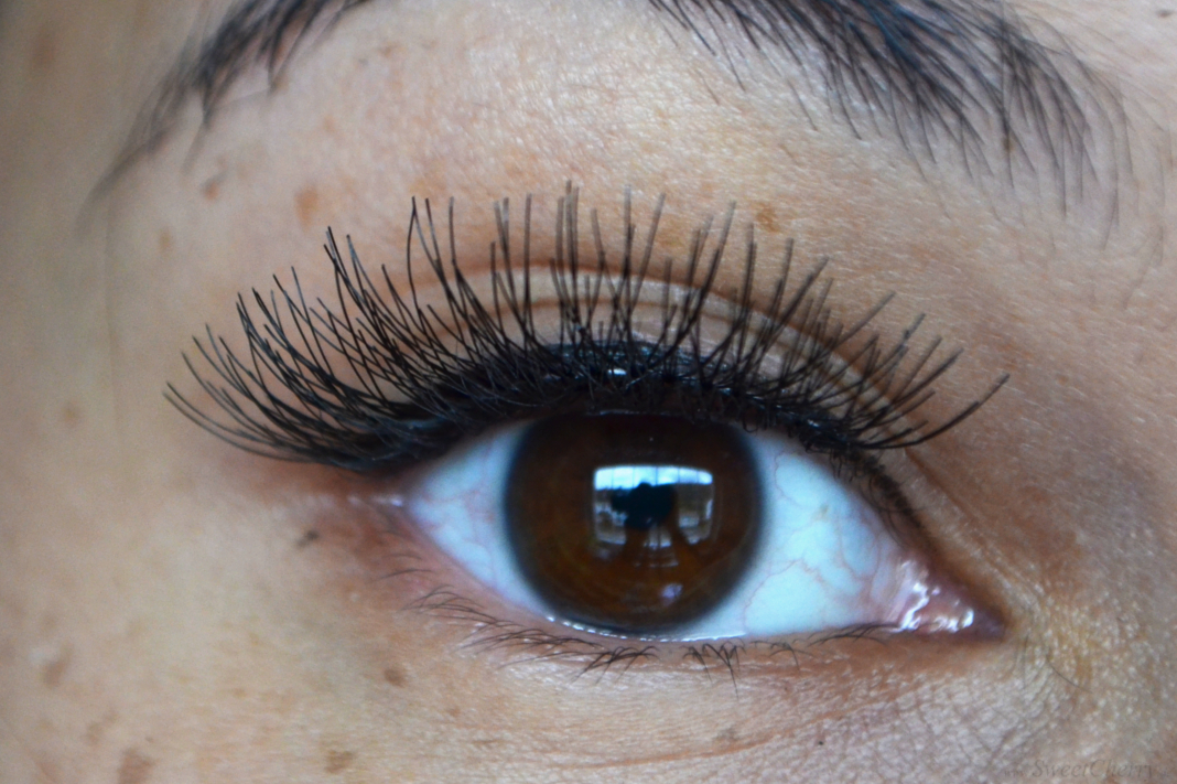 Fake Lashes | Falsche Wimpern für Cosplayer | Pa Dolly Love Lashes
