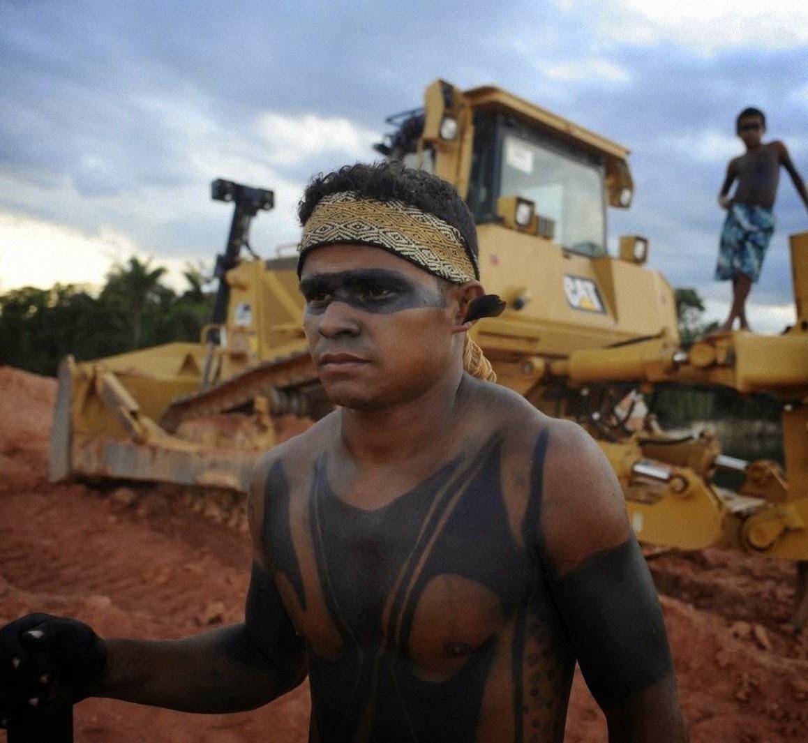 Tentáculos da CNBB e ONGs verdes tentam frustrar o porvir das gerações vindouras de brasileiros