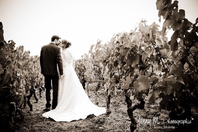 photo de couple sépia dans les vignes, portraits mariés Jardin Cléray Vallet