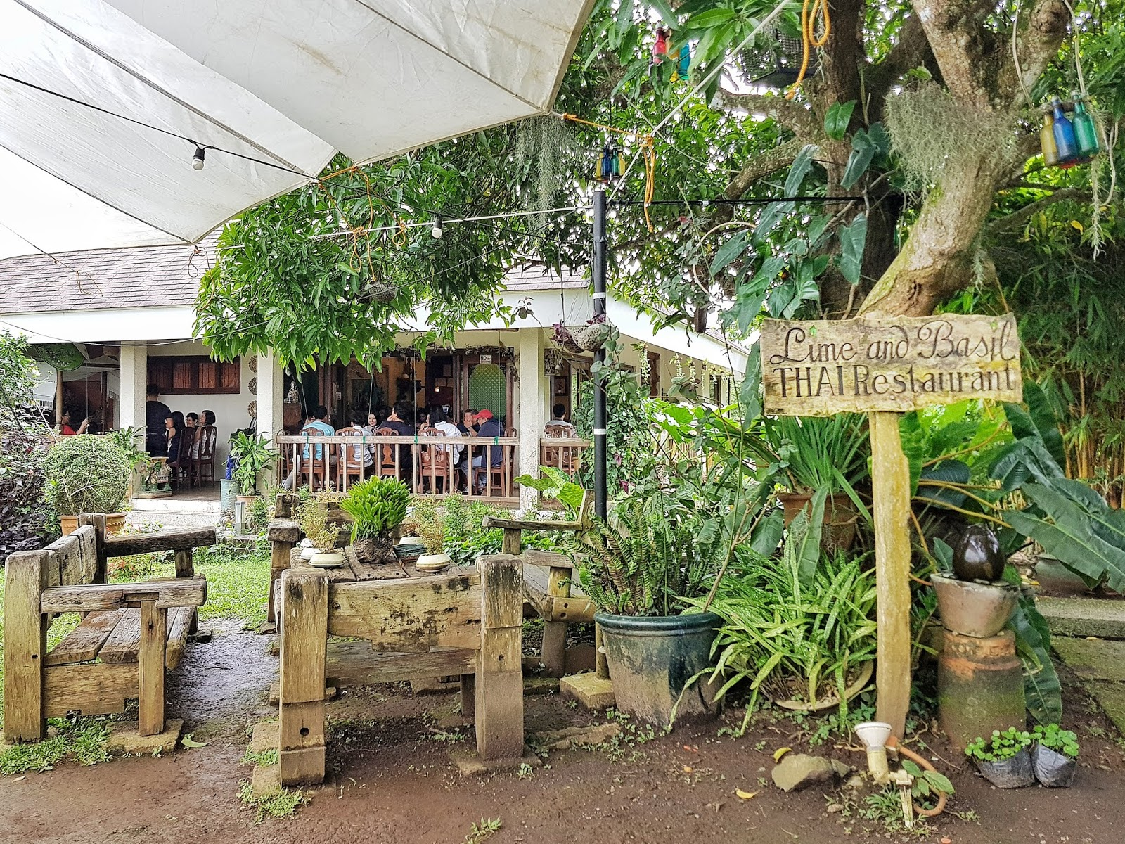 Gastronomy By Joy Lime And Basil A Hidden Thai Resto In