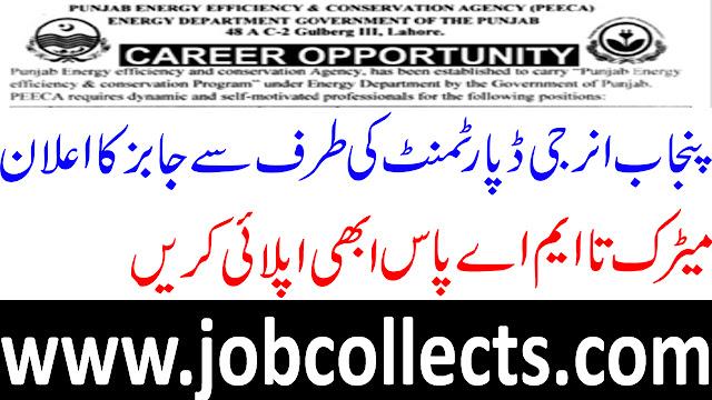 Punjab Energy Efficiency And  Conversation Agency PEECA Jobs
