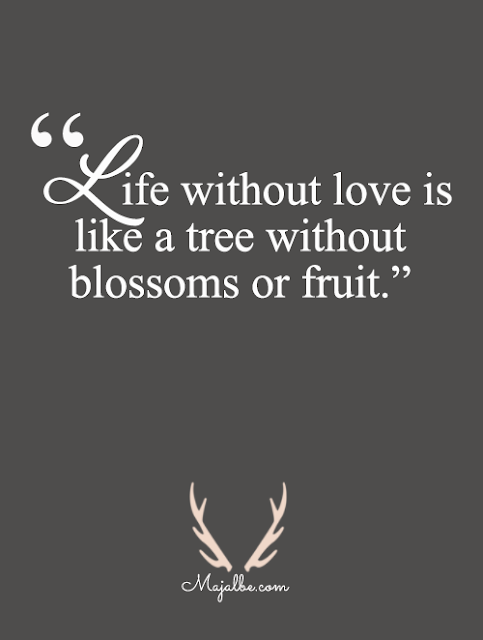 Useless Love Quotes