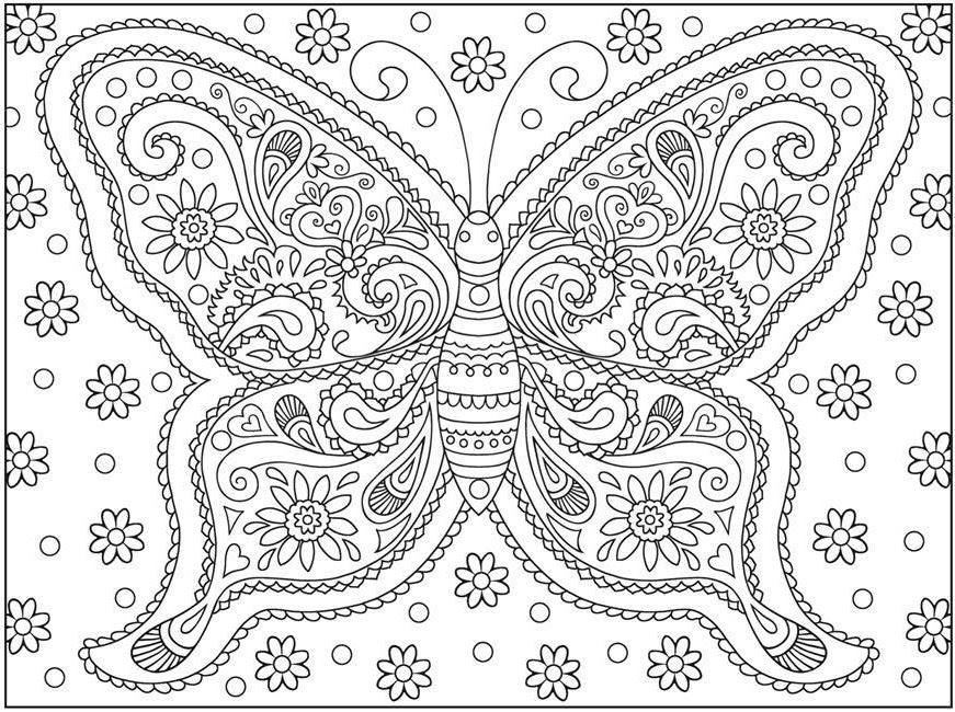 Aslan Resmi Boyama Egitimhane Coloring Free To Print