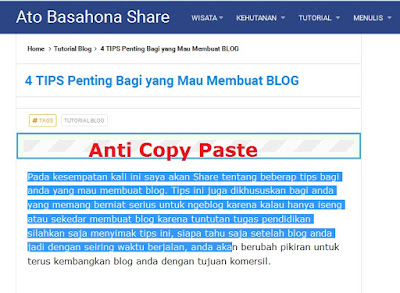 Cara Pasang Script Anti Copy Paste Blogs