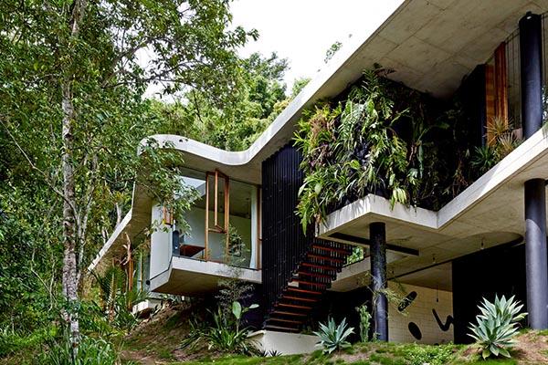 entrée d'une maison d'architecte dans la jungle australienne