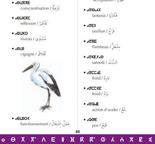 dictionaire amazigh