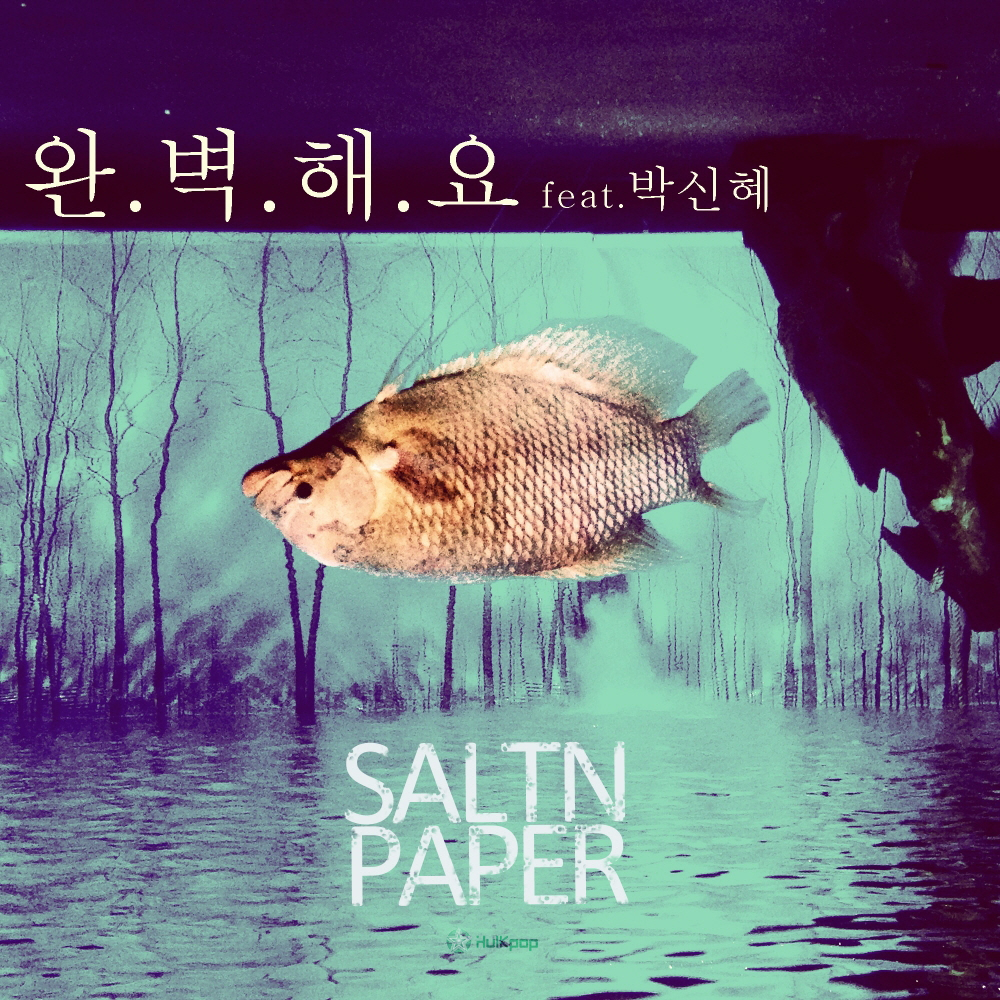 [Single] SALTNPAPER – Perfect