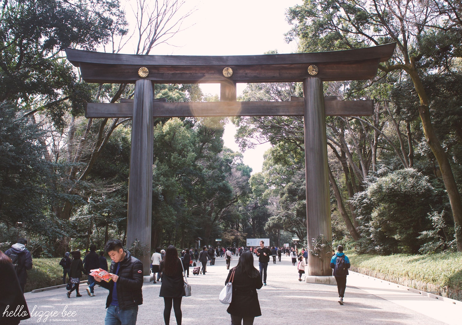 meiji shrine garden