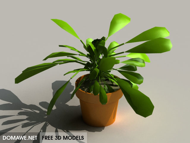 DOMAWE net: House Plant 3D Model Free Download - 8