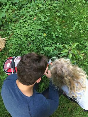 père et fille coupent la menthe