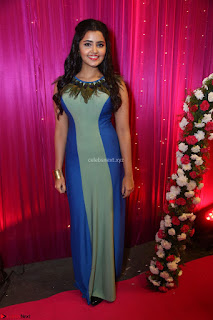 Anupama Parameswaran in lovely shaded gown ~  Exclusive 02.JPG
