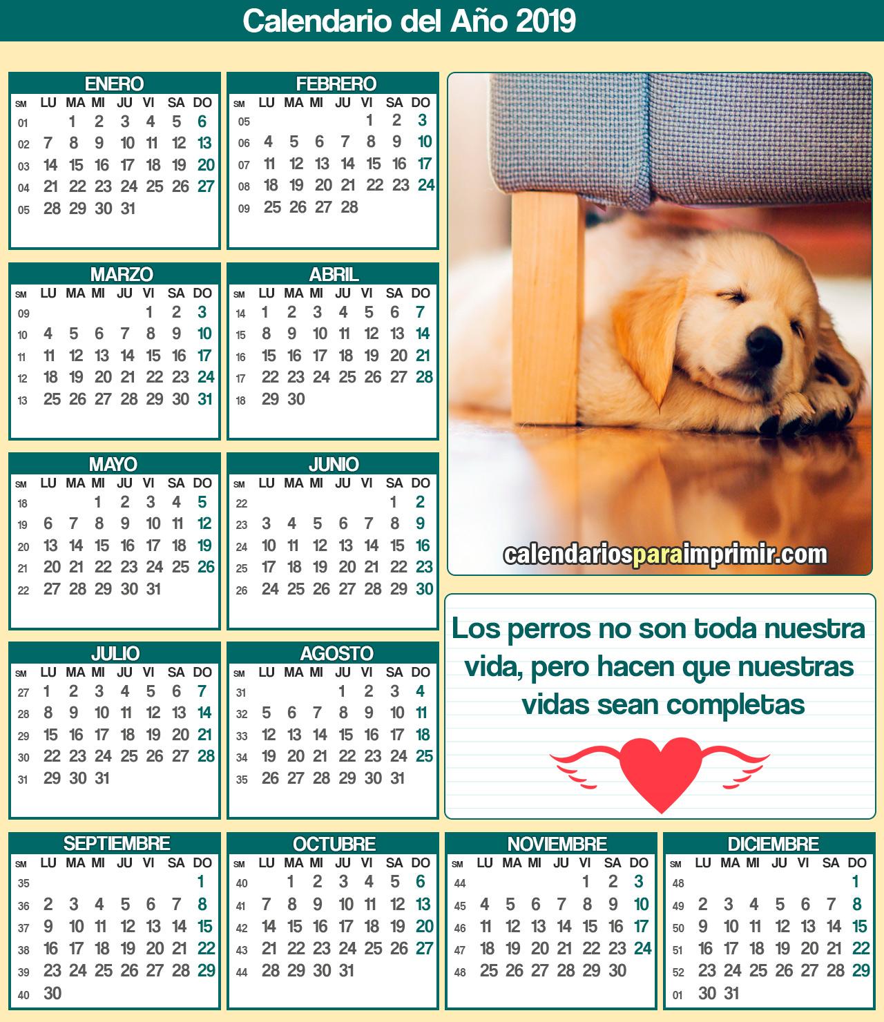 calendario 2019 para imprimir mascotas