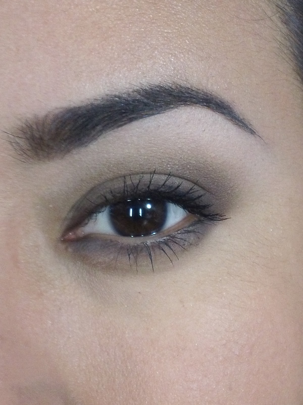 Beginners Eye Makeup: Eye Dazzle's Beauty Blog: Easy BROWN Smoky Eye For Beginners