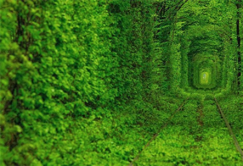 Tunnel of Love in Kleven, Ukraine, a Fairytale Train Track