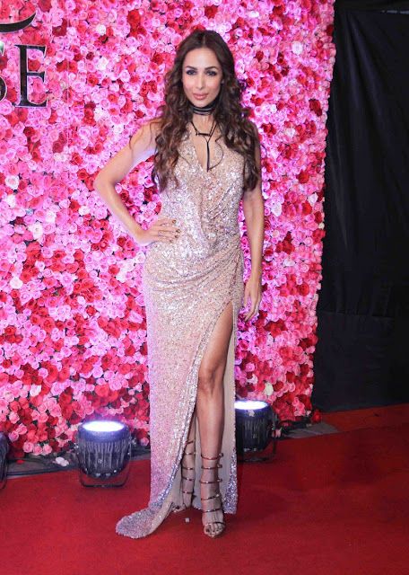 Malaika arora khan at Lux golden rose Awards