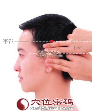 率谷穴位 | 率谷穴痛位置 - 穴道按摩經絡圖解 | Source:xueweitu.iiyun.com