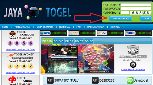 solusi-lupa-password-togel-online-jayatogel