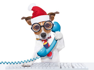 Dog wearing Santa hat on the phone