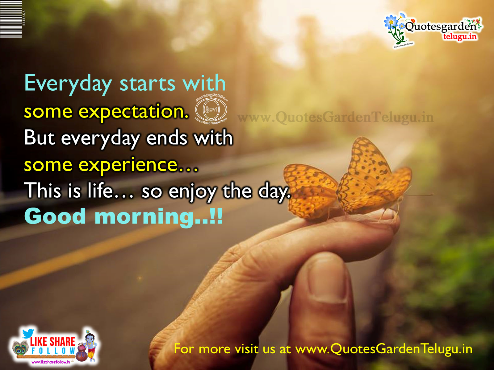 Daily Inspirational Quotes About Life Quotes Garden Telugu Telugu Quotes English Quotes Hindi Quotes