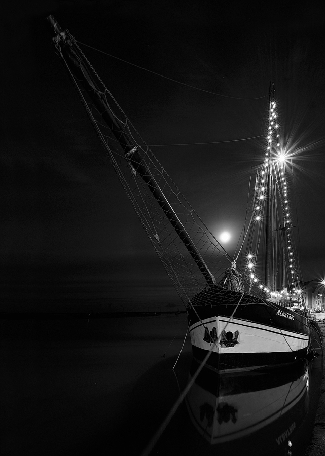 Albatros will full moon behind, Fuji X-T2 with Fujinon 10-24mm F4 lens, tripod and cable release
