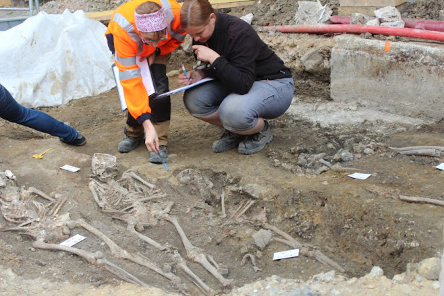 500-year-old burials revealed in french city of Rouen during construction work