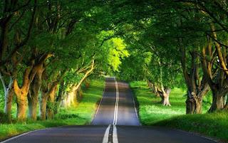 Pengertian Audit Lingkungan