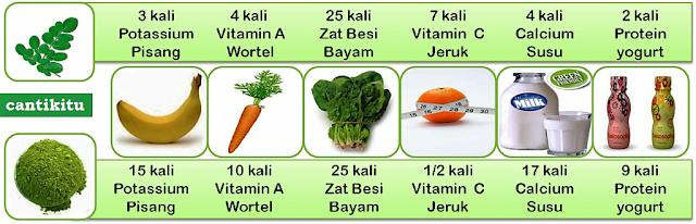 manfaat daun kelor untuk kesehatan