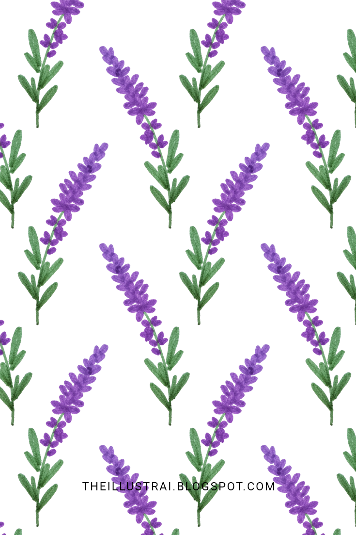 How To Draw Lavender In 6 Easy Steps The Illustrai