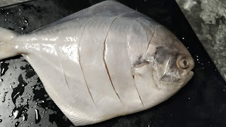 5-6 Incision on Pomfret fish for Tandoori Pomfret Recipe