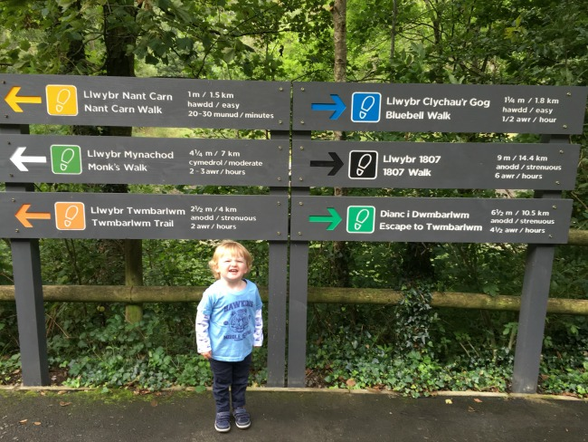 Cwm-Carn-forest-A-Toddler-Explores-toddler-stood-in-front-of-waymarker-sign