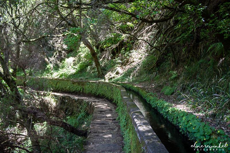 Levada das 25 fontes, Madeira tips