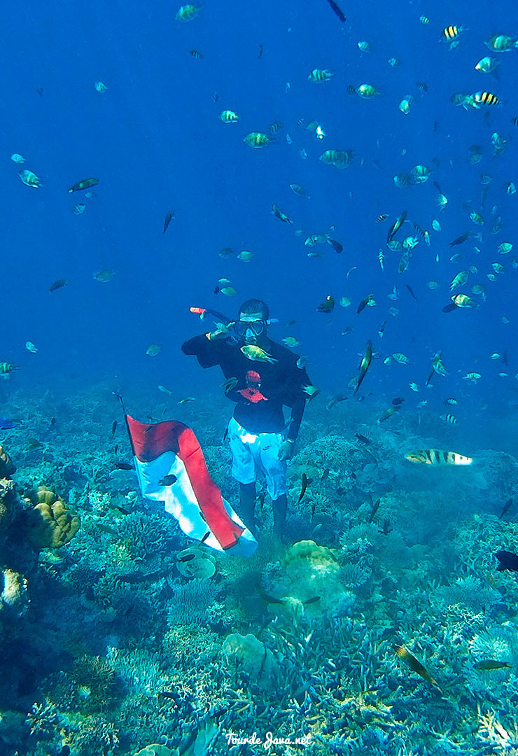 underwater pulau harapan kepulauan seribu