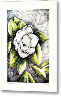 http://c-f-legette.pixels.com/featured/magnolia-ii-c-f-legette.html