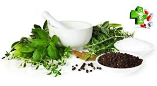 Obat Herbal Atasi Gatal Di Seluruh Tubuh