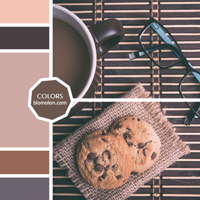 variedad_en_color_moodboard_30