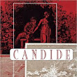 Candide by Voltaire- Part 1 A trip into the best of all possible worlds.