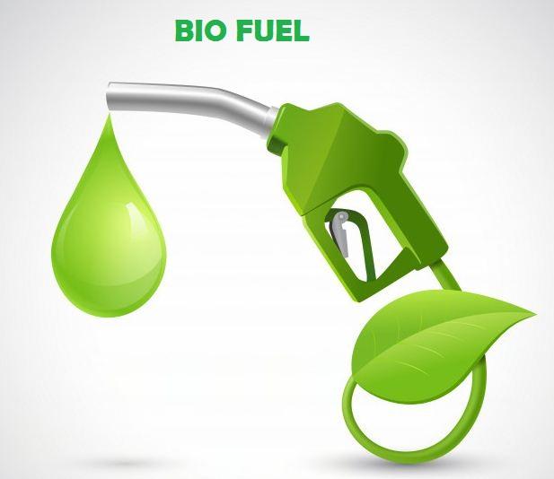 Bio Fuel : Bahan Bakar Alternatif Di Masa Depan