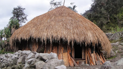 Gambar Rumah Honai