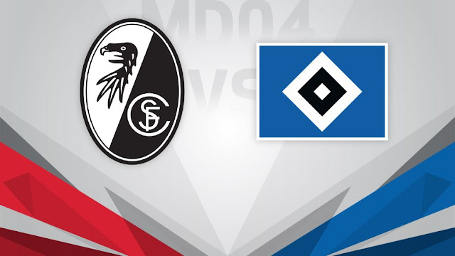 Freiburg vs Hamburger SV Full Match & Highlights 01 December 2017