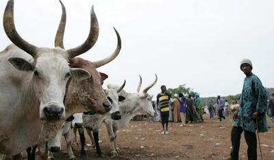 fulani herdsmen killings in nigeria