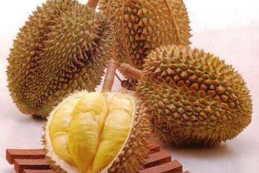 Inilah 10 Jenis Durian yang Paling Bikin Ketagihan