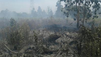 Wah .. Dukun Ikut Membantu Cari Anggota TNI yang Hilang Saat Bertugas Padamkan Kebakaran Lahan Di Riau - Commando