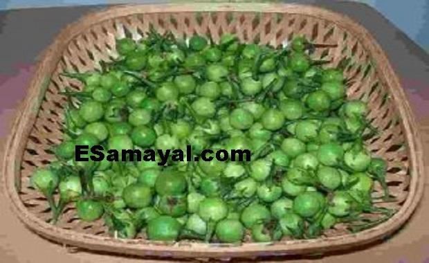 சுண்டைக்காய் நெல்லிக்காய் வதக்கல் செய்முறை   Sundaikkay Gooseberry Recipe !